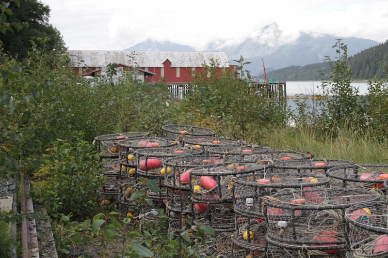 Crab pots staged nearby the Cannery