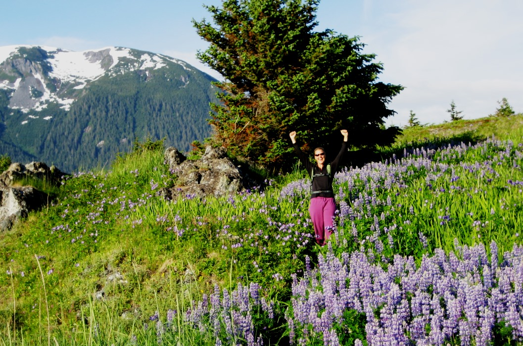 Guest enjoyes the Lupines and Wild Iris in bloom at Kelgaya Point