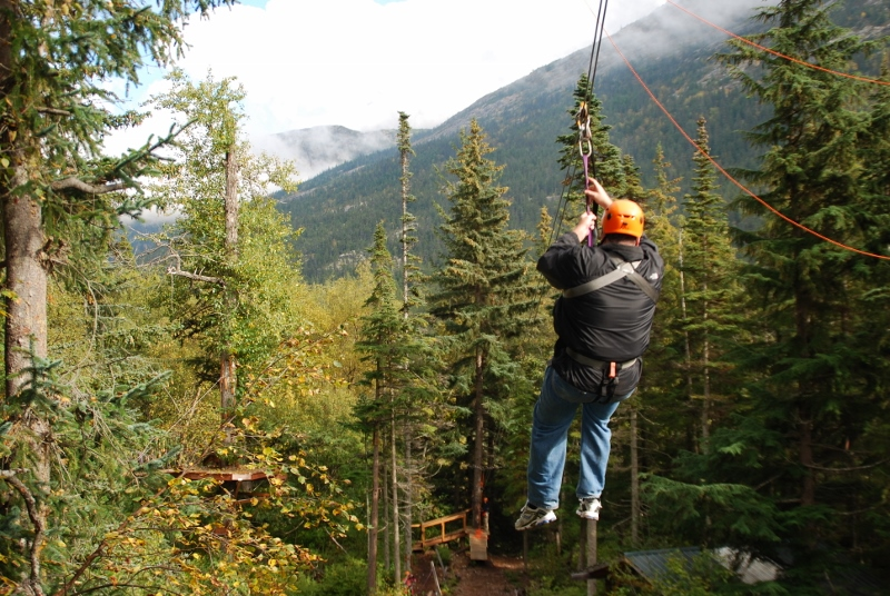 Zipline through the treetops
