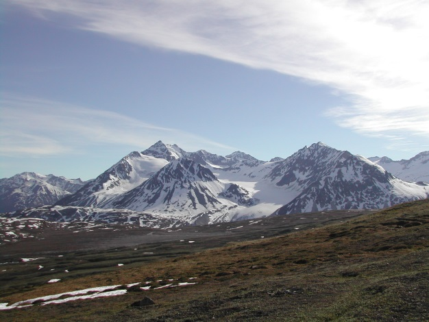 Alpine tundra of the Haines summit in early summer