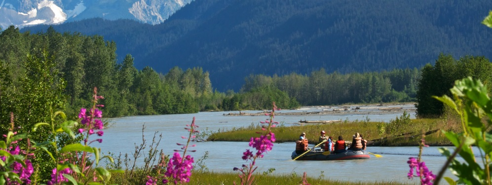 Explore the Chilkat Bald Eagle Preserve by Raft