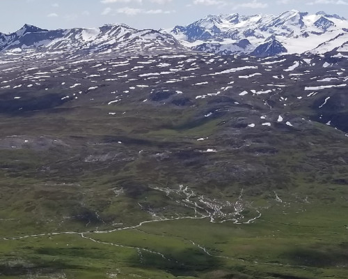 Overview of the Haines summit area